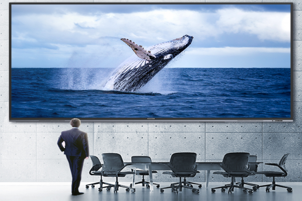 企业会议室高清LED巨幕—98、110英寸会议屏